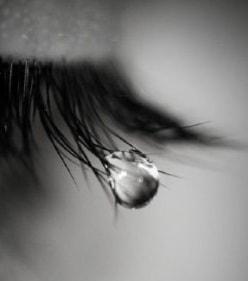 Zonder verdriet…